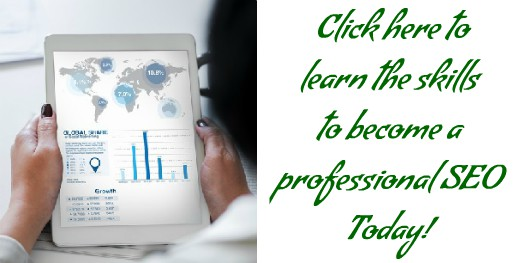 Click to learn about becoming an SEO Professional
